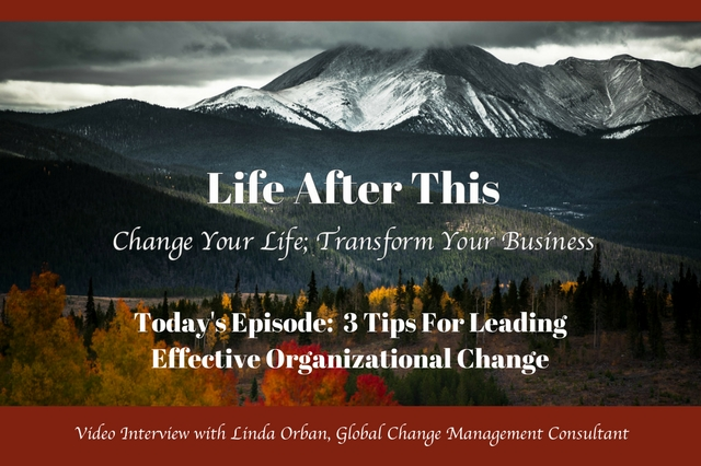 organizational change, change management, role of leadership, business tips, the people side of change, how to become more agile, effectively manage change, leadership
